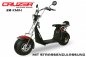 Preview: EEC Cruzer S10 Eco 1500W 60V 8 Zoll mit Zulassung Lithium-on Batterie 20 Km/h
